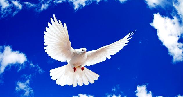 สันติภาพ